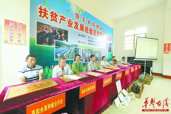 【走三湘 看扶贫】安仁县东桥村:脱贫能手坐上主席台