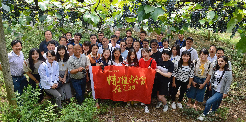 媒体团来到中方县的刺葡萄海洋