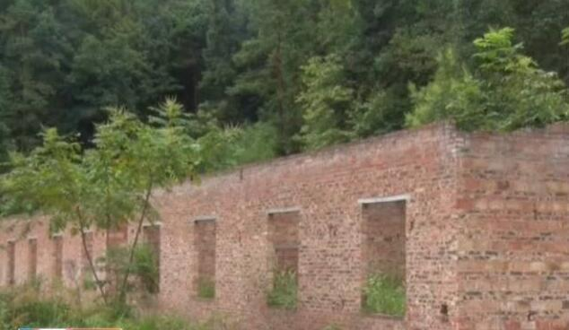 衡阳一村民自拆百万猪场 还家乡青山绿水
