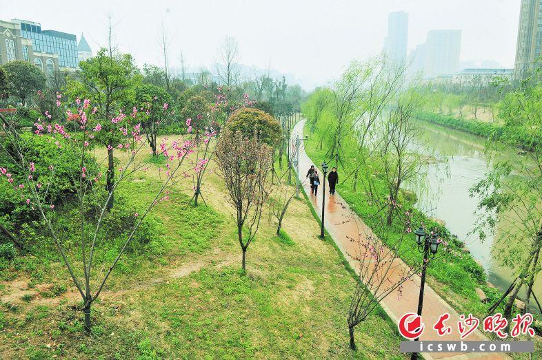 圭塘河近年来经过治污改造、景观升级,成为市民休闲锻炼的好去处。 长沙晚报记者 贺文兵 摄