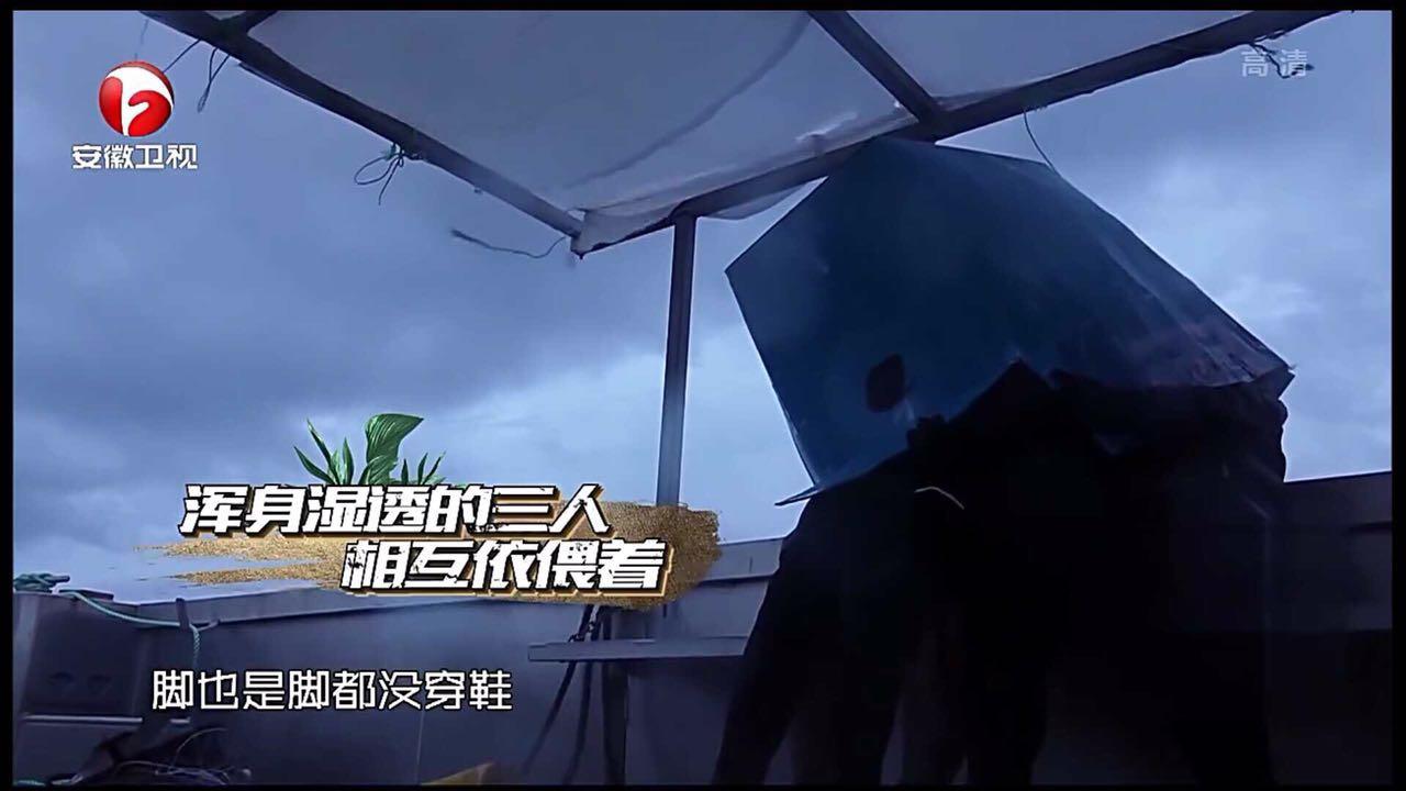 《我们的征途》杜海涛刘也海绵宝宝组合连钓大鱼满载而归