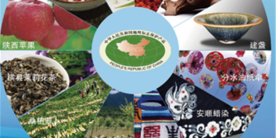 [砥砺奋进的五年・成就展]桑植萝卜入选国家地理标志产品