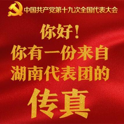 你好,你有一份来自湖南代表团的传真