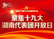 中外媒体聚焦湖南的开放自信——湖南代表团开放日引发热烈反响