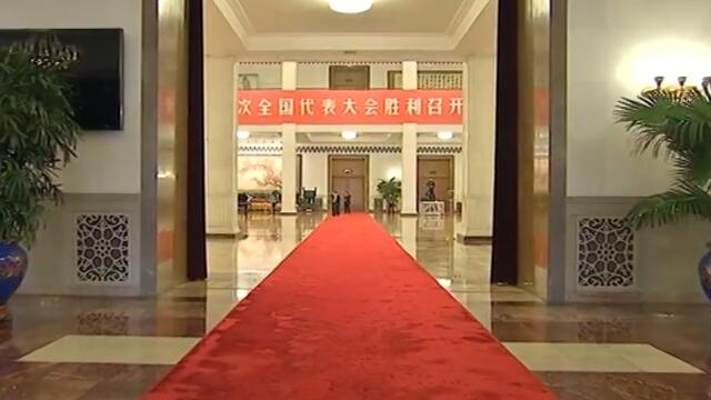 """党代表通道:显自信底气 谈""""中国故事"""""""