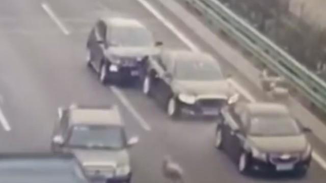 三只羊上高速致多车连发追尾事故 4人死亡