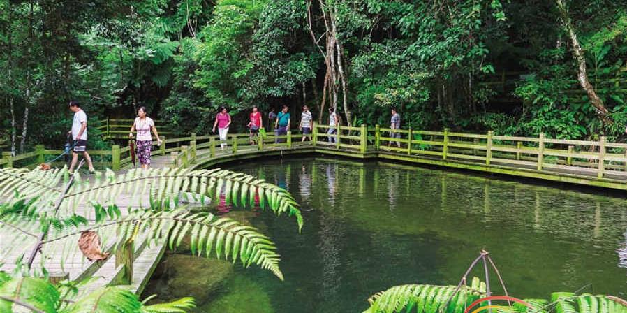 """去五指山热带雨林徜徉山水 享""""醉氧""""时光"""