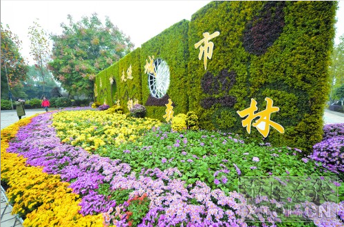 市民在观赏菊花造型。(记者 陈旭东 摄)
