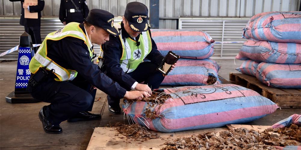 深圳查获穿山甲鳞片11.9吨 至少2万只穿山甲惨遭杀戮