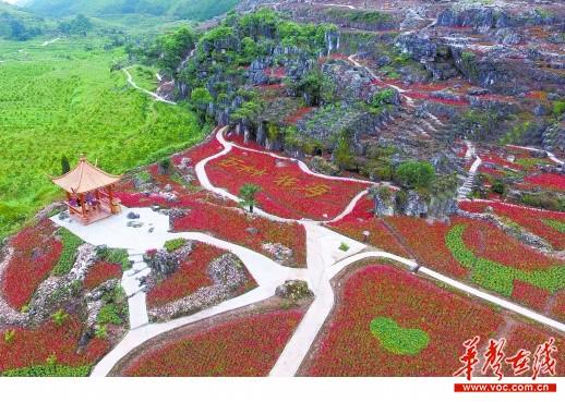 [湖南乡村振兴探索]鹤城区白马村--贫困村追梦绿富美