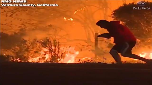 在南加州的森林大火中被拍摄到一幕很暖的画面