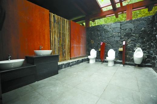 """让如厕成为一种享受 看湖南""""厕所革命""""如何奏响""""交响乐"""" 新湖南www.hunanabc.com"""