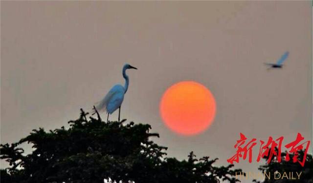 [长沙] 【看图赋诗】相伴 新湖南www.hunanabc.com