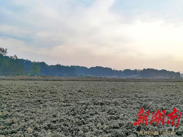 [长沙] 冬日长沙别样红(之八) 新湖南www.hunanabc.com
