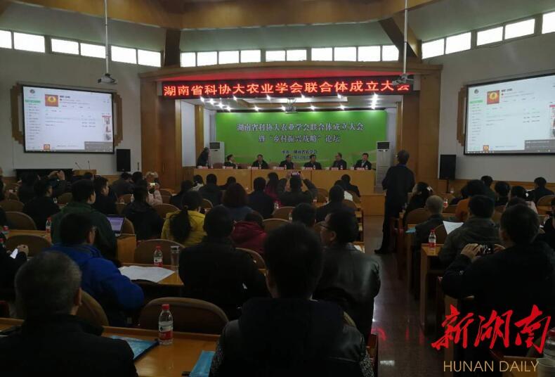 18个学会共建大农业联合体 6位院士登台乡村振兴战略论坛 新湖南www.hunanabc.com