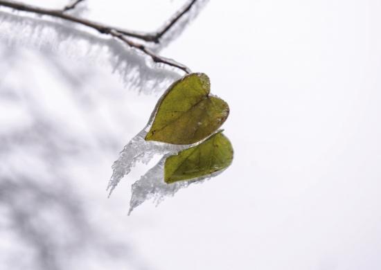 [综合] 新闻早餐丨新一周迎来连晴天气,但最低温将降至-4℃ 新湖南www.hunanabc.com