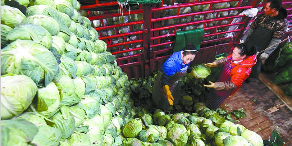 长沙:蔬菜足 菜价稳