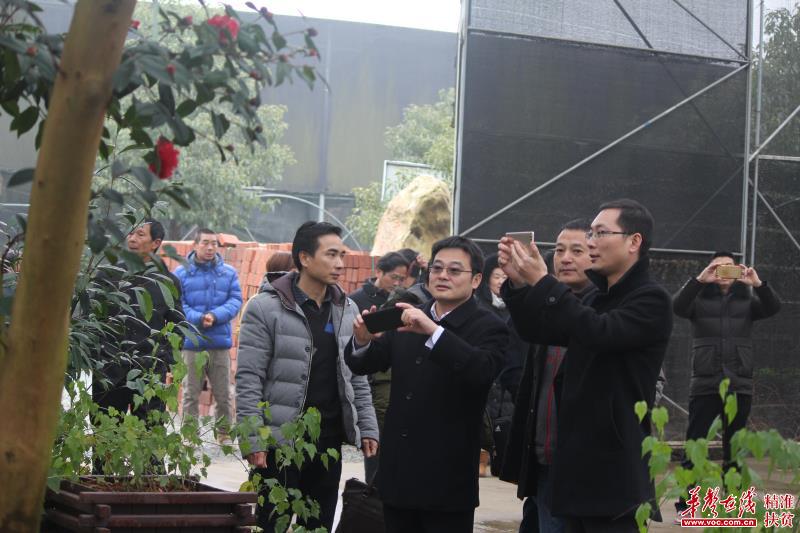 金沙娱乐:湖南衡南县合力打造泉湖镇万亩田园综合体