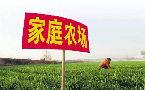 湖南家庭农场发展到3.9万余户
