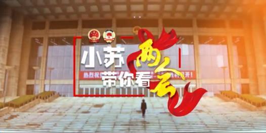 """【小苏带你看两会】政协小组讨论点赞关键词""""委员很忙"""""""