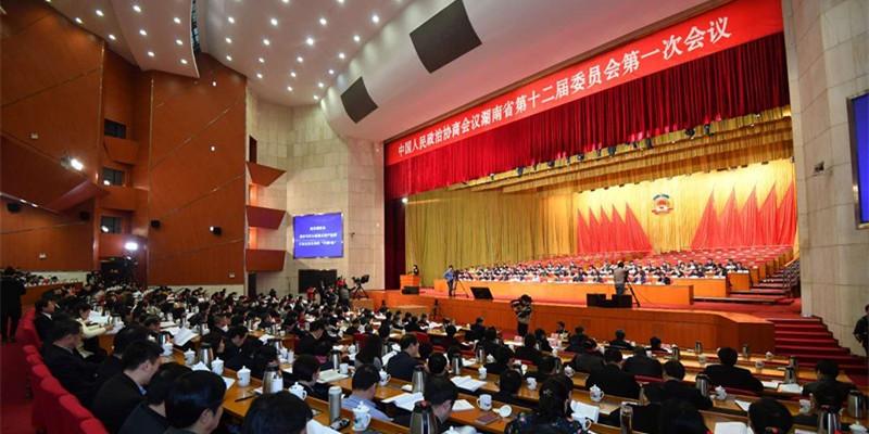 华声在线・新湖南直播回顾丨省政协十二届一次会议二次全会