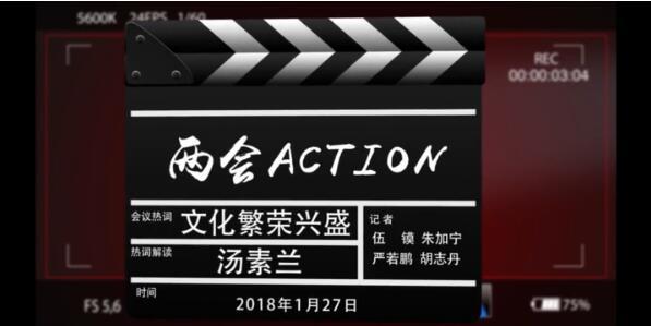 【两会Action】打造湖湘文化品牌 助推文化繁荣兴盛