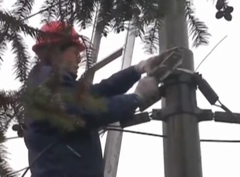 衡阳通讯光缆中断 维修人员徒手抢修