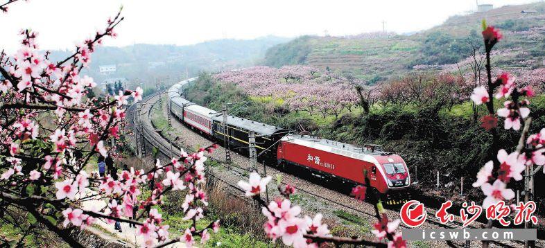 现在仍旧在承载着春运重任的火车。本版照片除署名外均为长沙晚报记者贺文兵摄