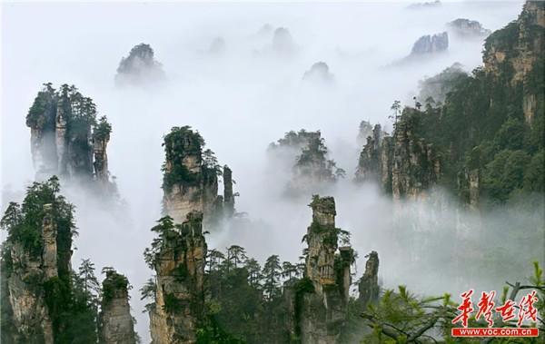 阿凡达原型地——中国著名风景区张家界的独特峰林(彭清化 摄).