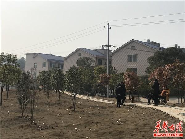 【新春走基层·年味湖南】返乡村民两年过年未回家 村里颜值悄然变高