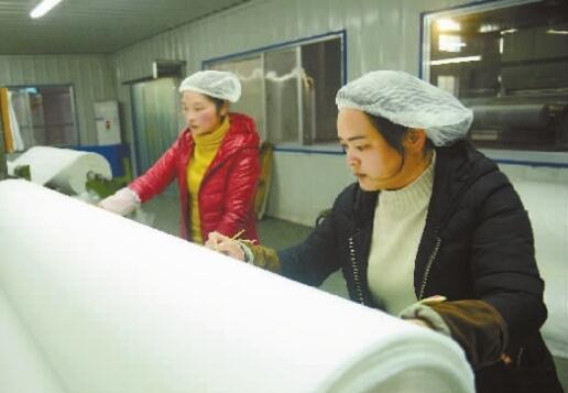 """【今朝湘企更好看】湖南福尔康:一朵棉开出200种""""花"""""""