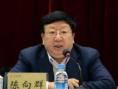 陈向群:推动财政政策聚力增效 促进经济高质量发展