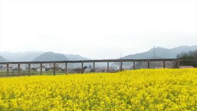 三湘大地 春暖花开