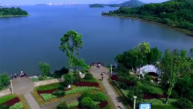 记忆中最美的洞庭湖