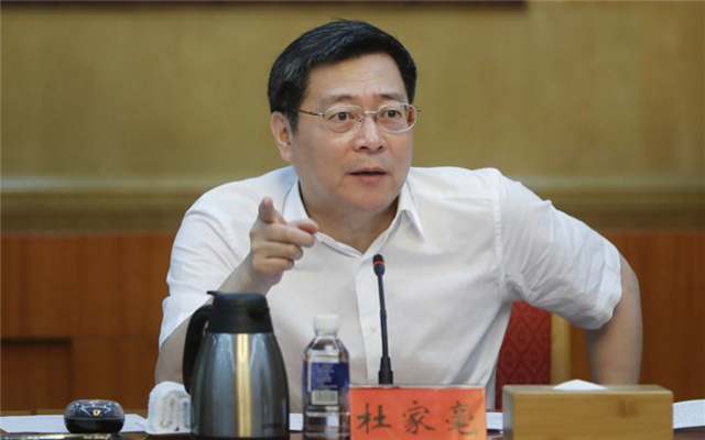 杜家毫:以壮士断腕的决心推进长江岸线专项整治