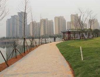 """怀化迎丰公园""""迎丰花廊""""提质改造工程本月完工"""