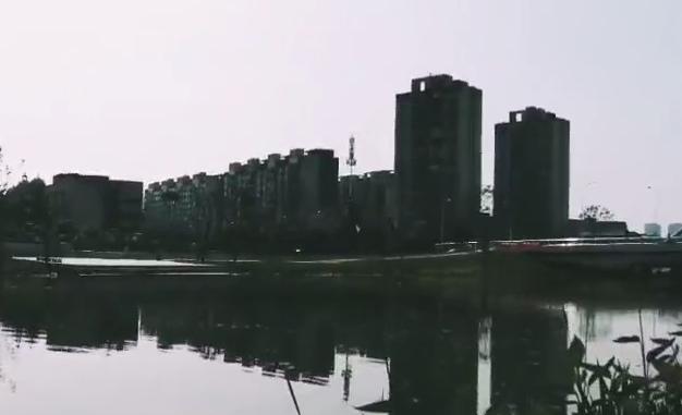 【美丽中国长江行】常德城区新河水渠
