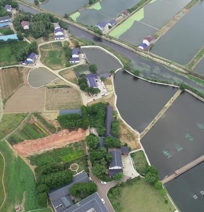 益阳赫山区:鱼米之乡探索现代农业