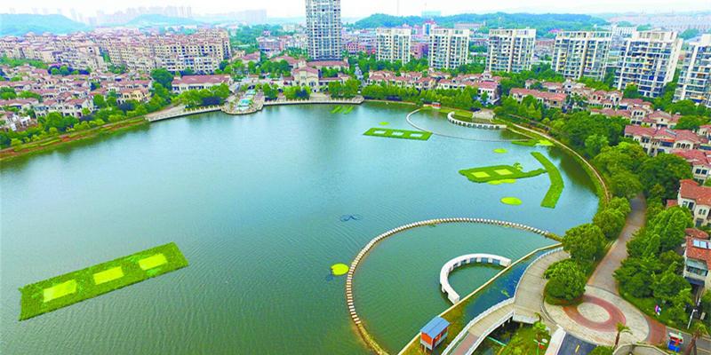 长沙楚家湖:昔日臭水沟 今日亲水地