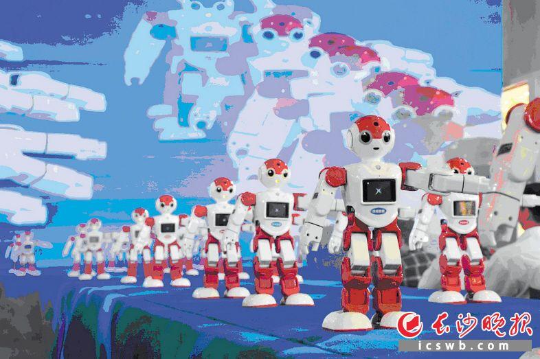 活跃在长沙科技主题活动上的机器人
