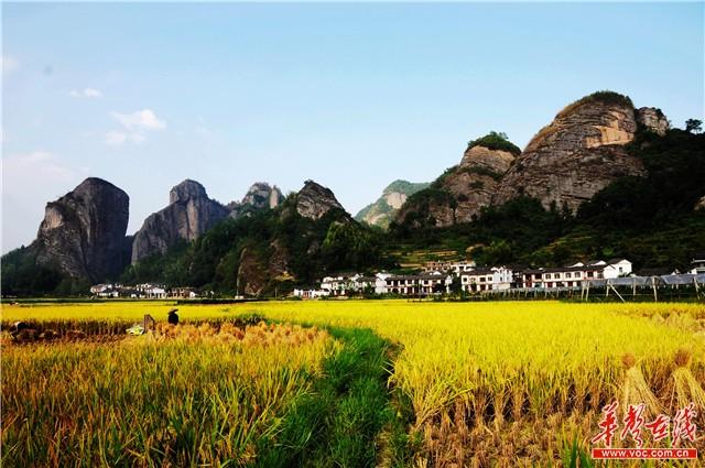 位于邵阳市城步县的南山风景区,海拔1760米,这里年平均气温10.