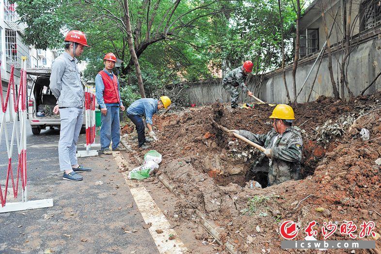 宁乡市一个选址在玉潭街道八一社区金海花园小区绿化带中的变压器正施工中。 王志伟摄