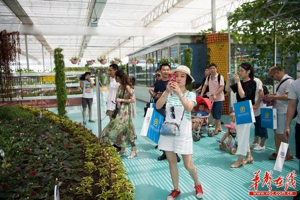 益阳现代农业嘉年华7月27日开园 农旅融合助力乡村振兴