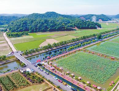 农旅融合 打造美丽乡村升级版