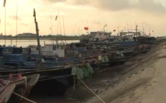 """台风""""云雀""""登陆上海 超13万人撤离"""