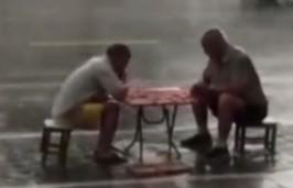 大爷雨中淡定下棋:不分胜负不回家