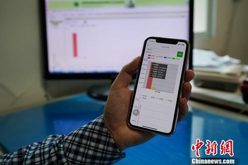 资料图:民众使用手机上网操作。<a target='_blank' href='http://www.chinanews.com/'>中新社</a>记者 贺俊怡 摄