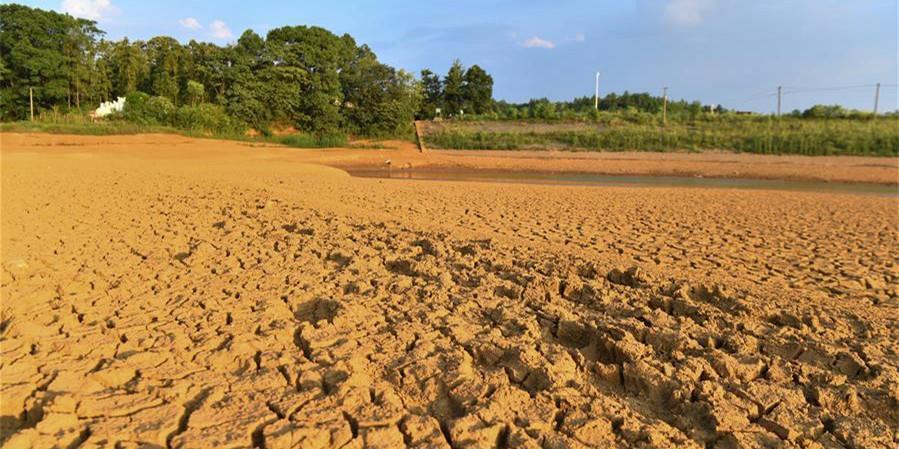 湖南2.5万人因旱遭遇饮水难 201万亩农作物受旱