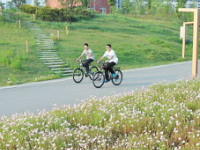 长沙今年将建425.6公里自行车道