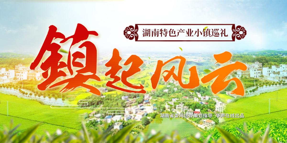"""【专题】""""镇""""起风云——湖南特色产业小镇巡礼"""